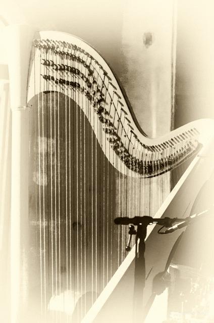HarpesAuMax-21