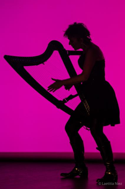 HarpesAuMax-48